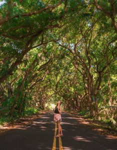 20 of Hawaii's Most Beautiful Places