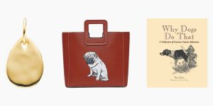 13 Gifts for Dog Lovers 2021